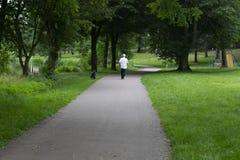 Uomo senior che cammina il suo cane in un parco verde fertile Immagine Stock