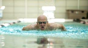 Uomo senior che nuota in modo competitivo Immagini Stock