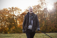 Uomo senior che prende cane per la passeggiata in Autumn Landscape fotografia stock libera da diritti