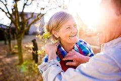 Uomo senior che regola il grembiule della donna, coppia anziana, giardino soleggiato, Fotografia Stock