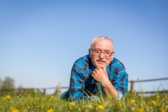 Uomo senior che si trova sul campo di estate in erba verde Immagini Stock Libere da Diritti
