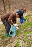 Uomo senior e le sue foglie dell'ortica di raccolto della figlia Fotografie Stock Libere da Diritti