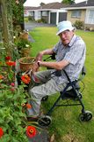Uomo senior: giardinaggio di seduta Immagini Stock Libere da Diritti