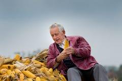 Uomo senior sul mucchio del cereale Immagini Stock Libere da Diritti