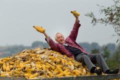 Uomo senior sul mucchio del cereale Fotografie Stock
