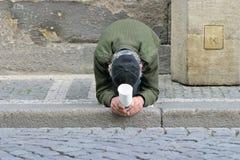Uomo senza casa Immagine Stock
