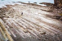 Uomo solo in mare su una riva rocciosa Fotografia Stock Libera da Diritti