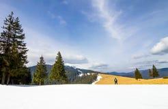 Uomo solo in montagne che stanno i pini vicini nel wint luminoso fotografia stock libera da diritti