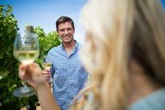 Uomo sorridente che esamina i bicchieri di vino della tenuta della donna Fotografia Stock Libera da Diritti