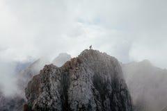 Uomo sotto le nuvole Fotografia Stock Libera da Diritti