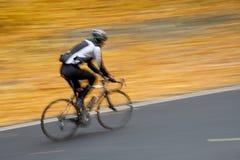 Uomo sulla bici Immagini Stock Libere da Diritti