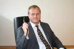 Uomo svedese di affari Immagini Stock Libere da Diritti