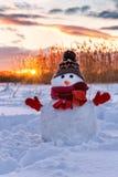 Uomo sveglio della neve sul tramonto Immagini Stock Libere da Diritti