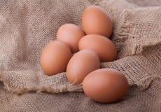 Uova immagini stock libere da diritti