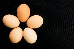 5 uova Fotografia Stock Libera da Diritti