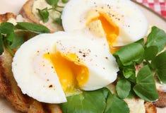 Uova affogate su pane tostato immagine stock