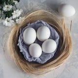 Uova bianche in ciotola di legno su fondo bianco, vista superiore Immagini Stock Libere da Diritti