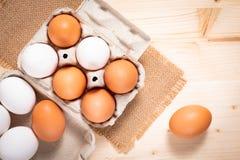 Uova bianche dell'alimento dell'azienda agricola sana di concetto e pape organici freschi delle uova Fotografie Stock