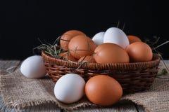 Uova bianche e marroni del pollo fresco sul primo piano del sacco, fondo di agricoltura biologica Fotografie Stock