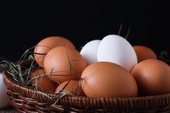 Uova bianche e marroni del pollo fresco sul primo piano del sacco, fondo di agricoltura biologica Fotografie Stock Libere da Diritti