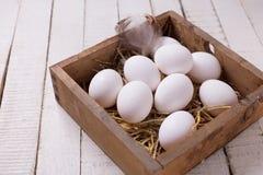 Uova bianche fresche Fotografia Stock Libera da Diritti