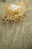 Uova bianche nazionali organiche nel nido della paglia Fotografia Stock Libera da Diritti