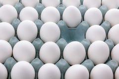 Uova bianche nell'imballaggio Fotografia Stock