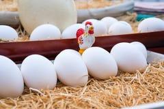 Uova bianche nella fine del canestro su Fotografie Stock