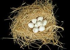 Uova bianche organiche nel nido della paglia Fotografie Stock Libere da Diritti