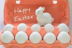 Uova bianche organiche in scatola delle uova Fine in su Fotografie Stock