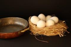Uova bianche sul nido per deporre le uova Immagini Stock Libere da Diritti
