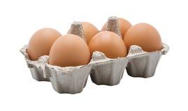 6 uova in cartone dell'uovo immagine stock