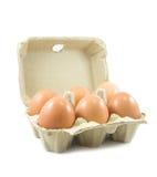 Uova in cartone di carta dell'uovo su fondo bianco Fotografie Stock Libere da Diritti