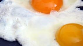 Uova che cucinano sulla padella videoripresa di 4K UltraHD video d archivio