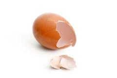 Uova col guscio Fotografie Stock