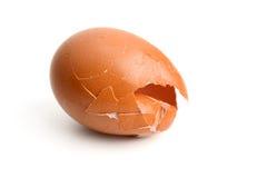Uova col guscio Immagini Stock