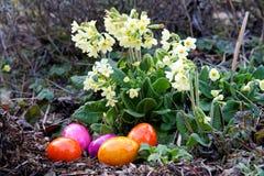 Uova colorate per Pasqua Fotografie Stock Libere da Diritti