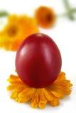 Uova colorate tradizionali Fotografia Stock