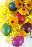 Uova colorate tradizionali Immagine Stock Libera da Diritti