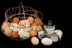 Uova con Coddlers ed il cestino fotografie stock