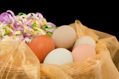 Uova con i nastri immagine stock