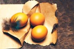 Uova con la bella piuma Fotografia Stock