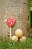 Uova con la caramella su un'erba verde Immagine Stock Libera da Diritti