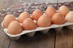 Uova contro i catkins del salice fotografia stock