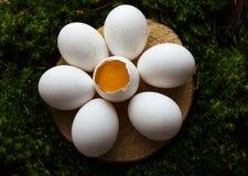 Uova crude sotto forma di margherita Fotografia Stock Libera da Diritti