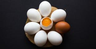Uova crude sotto forma di margherita su un fondo scuro Immagine Stock Libera da Diritti