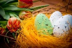 Uova degli uccelli in nido con i fiori del tulipano Fotografie Stock