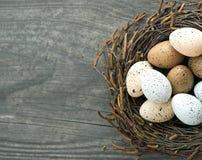 Uova degli uccelli in nido su fondo di legno Fotografia Stock