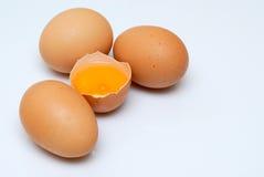 Uova dei prodotti organici Fotografia Stock Libera da Diritti