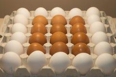 Uova del pollo Fotografie Stock Libere da Diritti